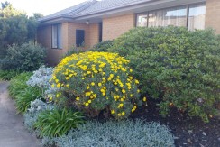ASPENDALE – Three bedroom townhouse with backyard, meters from beautiful beach